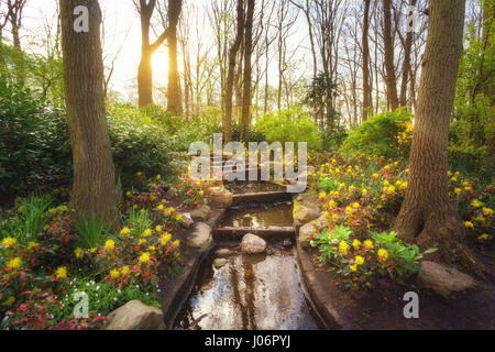 Erstaunlich, blühenden Frühling Park mit Wasserfall im weltberühmten Keukenhof-Park, Niederlande. Schöne Landschaft - Stockfoto
