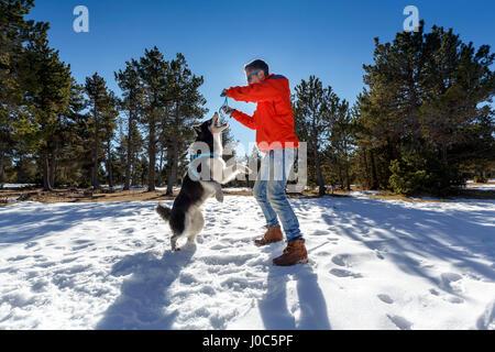 Reifer Mann mit Hund im Schnee spielen bedeckt Wald - Stockfoto