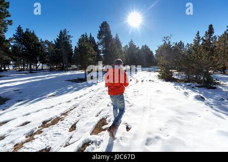 Rückansicht der Mann zu Fuß in Schnee bedeckt Wald - Stockfoto
