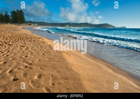 Avoca Beach auf Central Coast Australiens. - Stockfoto
