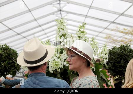 RHS Flower Show Cardiff Besucher Paar tragen Sommer Strohhüte im Werk Anzeige im Festzelt auf Bute Park Gärten Wales - Stockfoto