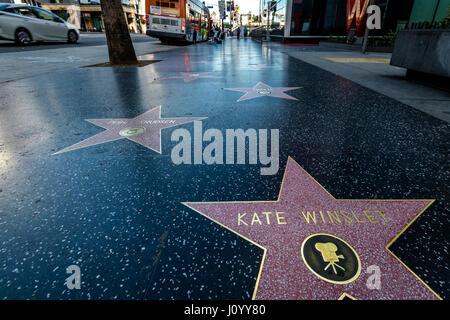 Dem Hollywood Walk of Fame in Hollywood Blvd - Los Angeles, Kalifornien, USA - Stockfoto