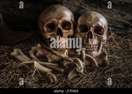 Gemälde Stillleben mit paar menschlichen Schädel auf Heu und Tier Knochen in Scheune Hintergrund, Vintage und dunklen - Stockfoto