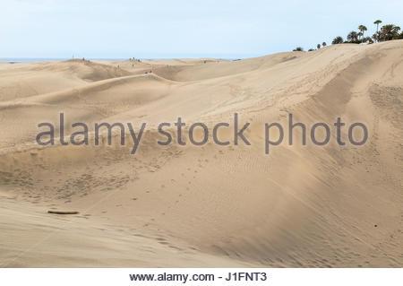 Dünen in Maspalomas auf Gran Canaria, einer der Kanarischen Inseln. - Stockfoto
