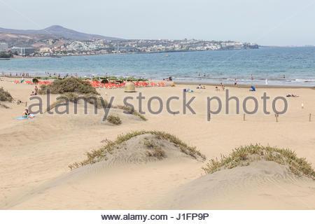 Der Strand und Start der Dünen bei Playa del Ingles in Maspalomas auf Gran Canaria mit der Bucht und Hotels in der - Stockfoto