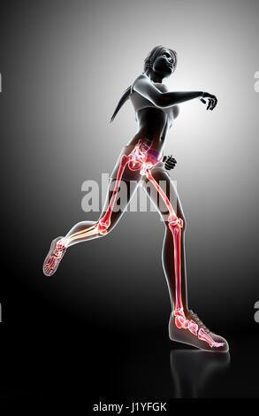 3D Illustration - Frau Runing Pose mit Röntgen Gelenke und Skelett ...