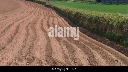 Furche Linien auf trockenen Böden in der Sonne - Stockfoto