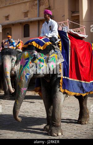 Elefanten und ihre Mahouts warten auf Touristen holen und tragen sie bis zu Amber Fort in Jaipur in Rajasthan, Indien. - Stockfoto