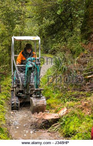 Mann Mit Einer Kobelco SK007 Mini Bagger Baumstumpf Entfernen Von Milford Track Fjordland National