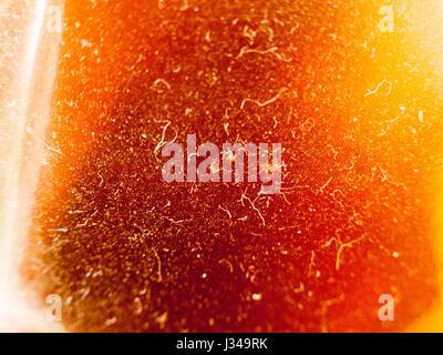 Textur auf ein Bier in der Flasche von der Seite hautnah mit viel Staub und Haare - Stockfoto