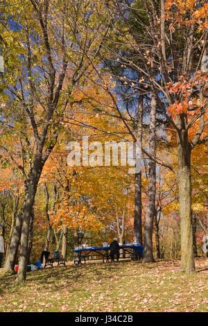 Senioren im Picnic Tisch bei mount-royal Park im Herbst, Montreal, Quebec, Kanada - Stockfoto