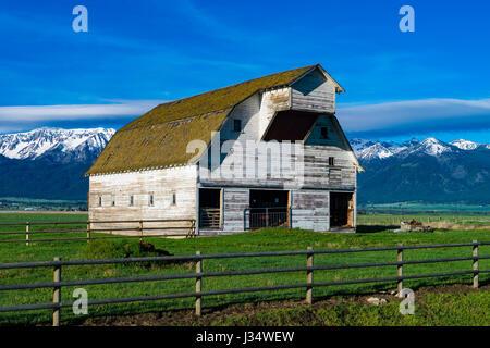 Weiße Scheune in der Nähe der Wallowa Mountains in Oregon - Stockfoto
