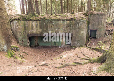 Bunker In Der Hurtgenwald Hurtgen Wald Huertgenwald Hürtgenwald