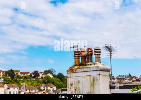 Vögel auf den Schornstein und Dächern von Gebäuden bedeckt mit grünem Moos, am Meer Ort aus der Vogelperspektive - Stockfoto