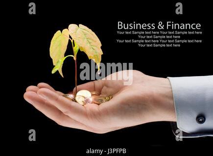 Geld und Anlage mit Hand - Finanzen Neugeschäft.  Geld auf dem Palm - Gewinn wächst - Stockfoto