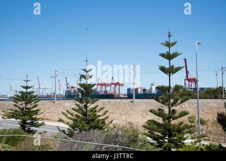 Drei Norfolk-Kiefern Frontmann Eisenbahn- und großen Versand Port-Portalkrane in Fremantle, Western Australia. - Stockfoto