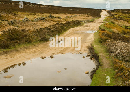 Houndkirk Road, Green Lane, - Stockfoto