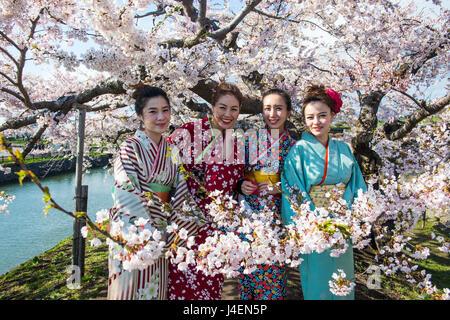 Frauen gekleidet als Geishas stehend in den blühenden Kirschbäume Bäumen, Fort Goryokaku, Hakodate, Hokkaido, Japan, - Stockfoto