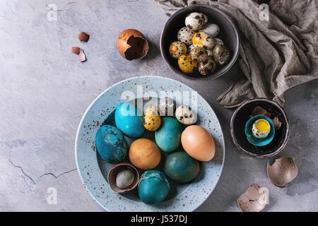 Farbige Ostern blau braun Hühner- und Wachteleier, ganzen und gebrochenen mit Eigelb in der Schale in gefleckte - Stockfoto