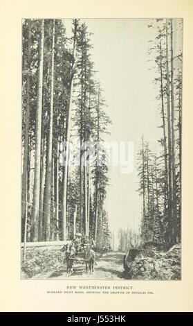 """Bild von Seite 72 von """"British Columbia; die vorhandenen Ressourcen und zukünftige Möglichkeiten usw. [mit Abbildungen.] - Stockfoto"""