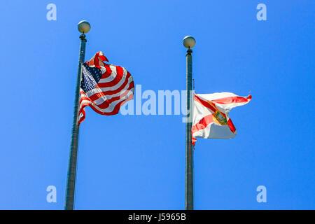 Die Florida State Flag und amerikanische Flagge fliegen entlang einander in der Innenstadt von Tampa - Stockfoto