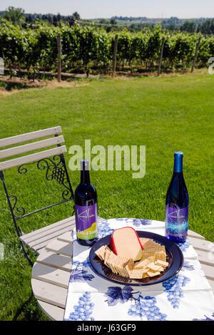 Michigan Coloma Karma Vista Weinberge und die Kellerei Trauben Landwirtschaft Landgut in Flaschen Wein Weinbau Verkostung - Stockfoto