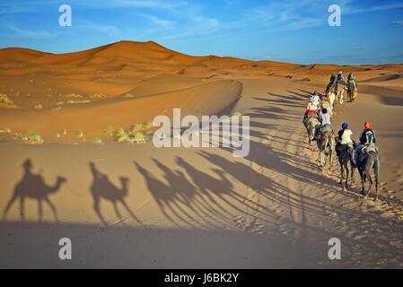 Safari, trekking-Touren der Kamele in der Wüste Marokko Sahara Merzouga - Stockfoto