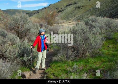 Umtanum Creek Trail, Yakima River Canyon Scenic und Freizeit Autobahn, Wenas Zustand Wildlife Area, Washington - Stockfoto