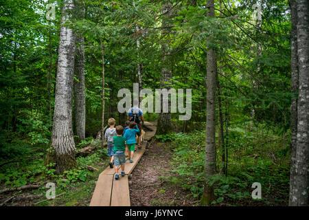 Vater von vier Kindern, die durch einen Wanderweg im Wald wandern - Stockfoto