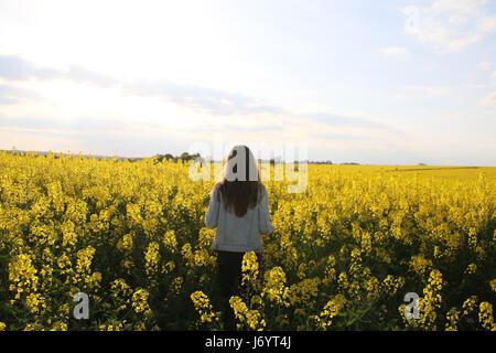 Mädchen stehen in einem Feld von Raps, Niort, Frankreich - Stockfoto