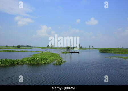 Blick auf die Arial Beel, eine große Wasserfläche von 136 Quadratkilometern südlich von Dhaka zwischen Padma und - Stockfoto