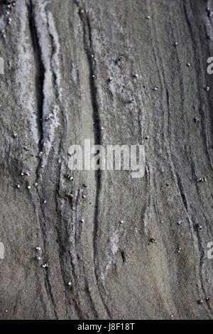 Detail des alten Felsbrocken auf der Seite von einem Strand. - Stockfoto