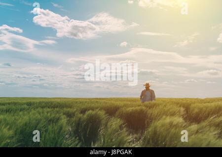 Männlichen Bauern zu Fuß durch ein grünes Weizenfeld an windigen Frühlingstag und Getreide zu prüfen - Stockfoto