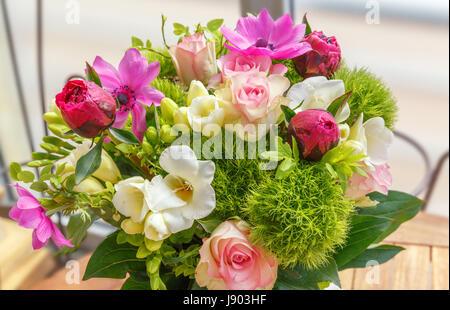 die gro en blumenstrau aus rosa pfingstrosen rosen in weibliche h nde stockfoto bild. Black Bedroom Furniture Sets. Home Design Ideas