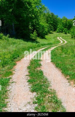 Eine kurvenreiche Straße führt das Auge in die Ferne an einem lebendigen Frühlingsmorgen. - Stockfoto