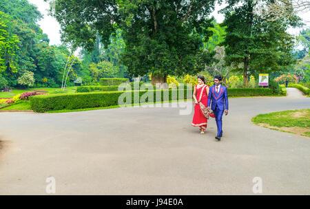KANDY, SRI LANKA - 28. November 2016: Königliche Botanische Garten ist der beste Ort für die Hochzeitsfeier am 28. - Stockfoto
