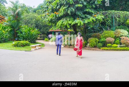 KANDY, SRI LANKA - 28. November 2016: Das Brautpaar im traditionellen Hochzeitskostüme gehen im königlichen botanischen - Stockfoto
