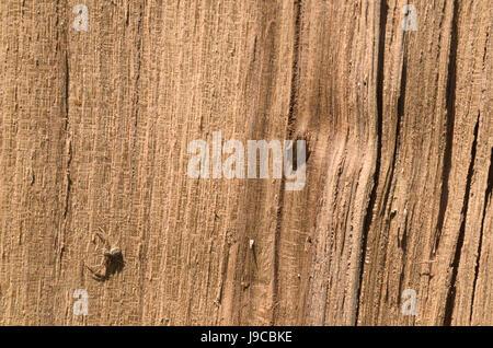 Linie Holzstruktur mit Gelbstich Farbe braun - Stockfoto