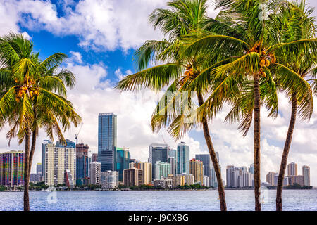 Tropischen downtown Skyline von Miami, Florida, USA. - Stockfoto