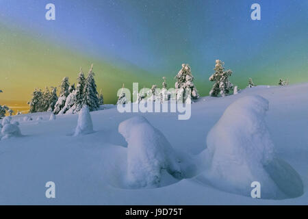 Bunte Nordlicht Aurora Borealis und Sternenhimmel auf die verschneiten Wälder, Ruka, Kuusamo, Finnland Österbotten - Stockfoto