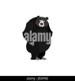 Baribal traurig Emoji. Amerikanischer Schwarzbär wailful Emotion isoliert - Stockfoto