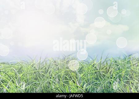 Abstrakte Rasen Hintergrund an einem schönen Sommertag mit Blendenfleck und Bokeh. - Stockfoto