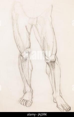 Hand gezeichnet Bleistift Illustration des menschlichen Beinen ...