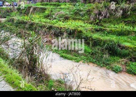 Reisen Sie nach China - Wasser-Strom in der Nähe von terrassierten Reisfelder in Dazhai Dorf im Gebiet von Longsheng - Stockfoto