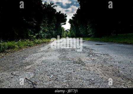 leere beschädigte Straße flankiert von Bäumen - Stockfoto