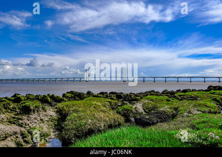 Severn Hängebrücke, Maut, die Kreuzung zwischen England und Wales.  Große natürliche Vordergrund Interesse. - Stockfoto