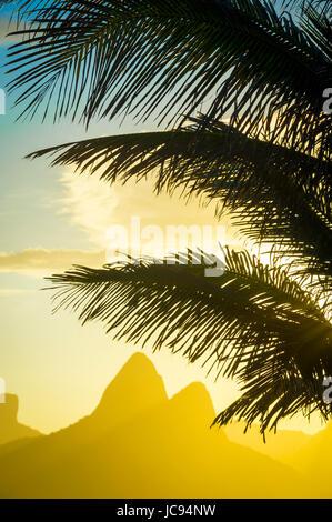 Goldener Sonnenuntergang leuchtet die Silhouette der Palmwedel gegen den ikonischen Umriss der beiden Brüder Berg - Stockfoto