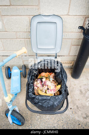 Eine einheimische Küche Abfallbehälter, mit Maden befallen ...