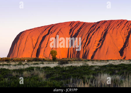 Uluru (Ayers Rock), Uluru-Kata Tjuta National Park, UNESCO-Weltkulturerbe, Northern Territory, Australien - Stockfoto