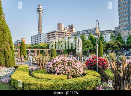 Drei Rose Garden Yamashita Park am Yokohama Wasser während der Garten Halskette Blumenfest 2017, Kanagawa, Japan - Stockfoto